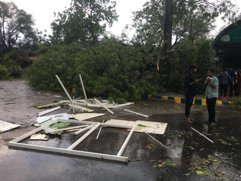 Indian Air, Balakot, Air strike, Zoo park, Hyderabad, Rainfall